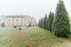 Cypress, arborvitae e casa bianca nella nebbia Fotografia Stock Libera da Diritti