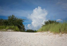 Cypress Beach Stock Photos