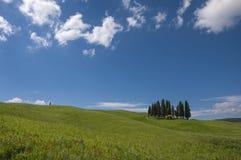 Cypress, campos verdes y cielo azul, Toscana, Italia Foto de archivo