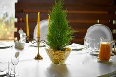 Cypress dans un vase décoré des citrons Combinaison fraîche et juteuse Décoration de Tableau au banquet de mariage images stock