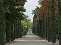Cypress et statue dans le jardin Image libre de droits