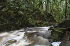 Cypress Falls. In Cypress Park, West Vancouver, BC, Canada Stock Images