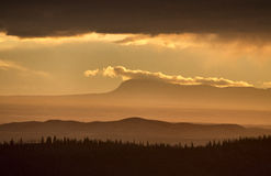 Cypress Hills Alberta Saskatchewan royalty free stock photography