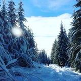Cypress Moutain Стоковые Изображения