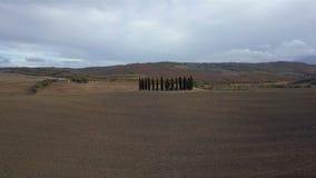 Cypress och jordbruksmark arkivfilmer
