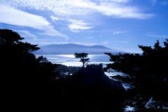 Cypress solitário, movimentação de 17 milhas Fotos de Stock Royalty Free