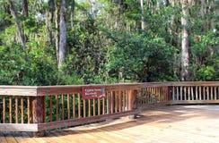 Cypress Swamp Boardwalk Stock Photography