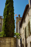 Cypress tree in front of Castle de Uzes Royalty Free Stock Image