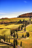 Cypress tree scenic road in Monticchiello near Siena, Tuscany, I Stock Photo
