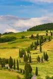 Cypress tree scenic winding road in Monticchiello - Valdorcia - near Siena, Tuscany, Italy, Europe stock photo