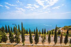 Cypress trees along the highway on the Black Sea coast. Beautiful view of the cypress trees along the highway on the Black Sea coast stock photos