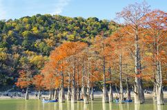 Cypress trees dot a pond in Sukko. stock photos