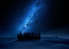 Cypress trees at night and milky way, Tuscany, Italy. Europe Stock Images