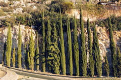 Cypress Trees row and road in a rural landscape, Europe. Stock Photos