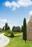 Cypresses. Landscape in Tuscany with cypresses Stock Photography