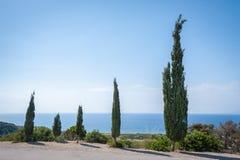 Cypresses overlooking Aegean Sea. Rhodes. Greece.  royalty free stock photo