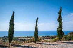 Cypresses overlooking Aegean Sea. Rhodes. Greece.  royalty free stock image