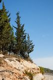 Cypresses on rocky hill in Jerusalem mountains Royalty Free Stock Photography