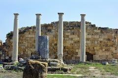 Cyprus, ancient Salamis Royalty Free Stock Image