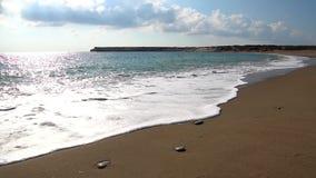 Cyprus beach, turtle nesting site. Wild Cyprus beach turtle nesting site stock footage