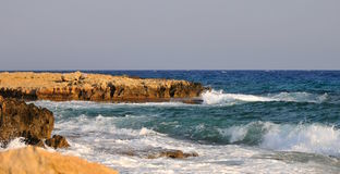 Cyprus coast - coral-reef Stock Photography