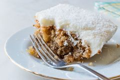 Free Cyprus Dessert Also Called Trilece / Kibris Tatlisi / Muhallebi Milk Pudding With Walnut And Breadcrumbs. Royalty Free Stock Image - 115364876
