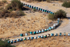 CYPRUS, GREECE/EUROPE - JULY 21 : Two lines of beehives in Cypru Stock Photos