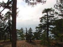 cyprus Montagne di Troodos E fotografie stock libere da diritti