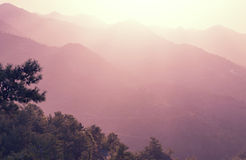 Cyprus mountains Royalty Free Stock Photography