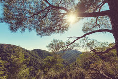 Cyprus mountains Royalty Free Stock Images