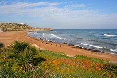 cyprus norr plage Arkivfoton