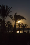 Cyprus. Protaras. View of palm trees and sea at sunset. Royalty Free Stock Photography