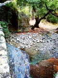 Cyprus river. A river under a bridge in Cyprus Stock Photo