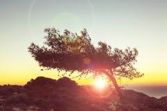 Cyprus sunset Stock Image