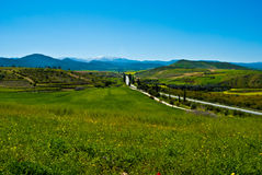Cyprus trodos mountains, a landscape of wild natur stock photography