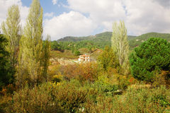 Cyprus village in mountains. Forest Royalty Free Stock Images