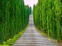 Cyprysowa aleja z wiejską wiejską drogą, Tuscany, Włochy obraz royalty free