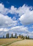 cyprysu gospodarstwa rolnego krajobraz Tuscan Fotografia Stock
