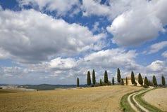 cyprysu gospodarstwa rolnego krajobraz Tuscan Obrazy Royalty Free