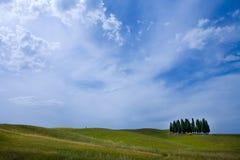 cyprysu krajobraz wsi Toskanii Zdjęcia Royalty Free