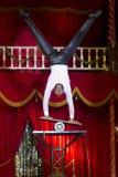 cyrk Zdjęcie Royalty Free