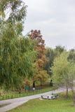 Cyrka park Fotografia Stock