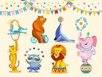 Cyrkowych zwierząt dekoracyjne ikony ustawiać Śmieszny cyrkowy słoń, tygrys, kot, niedźwiedź, szop pracz, lew wykonuje sztuczki w ilustracji
