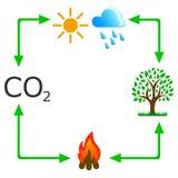 Cyrkulacja dwutlenek węgla w naturze ilustracja wektor