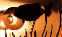 cystal рыбы Стоковая Фотография