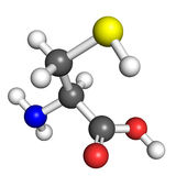 Cysteine molecule Stock Images