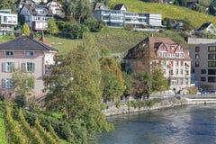 Cytiscape de Baden Imagen de archivo