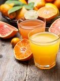 Cytrusów soki i świeża cytrus owoc Obraz Royalty Free