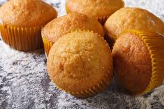 Cytrusów wyśmienicie muffins makro-, na floured stołowym odgórnym widoku Zdjęcie Royalty Free