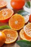 Cytrus cytryna, wapno, mandarynka i ?wiezi plasterki -, fotografia royalty free